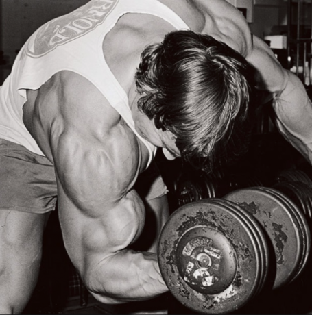 Arnold Bodybuilding Concentration Curl Shortened Biceps