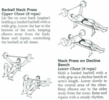 Barbell Neck Press Diagrams Vince Gironda